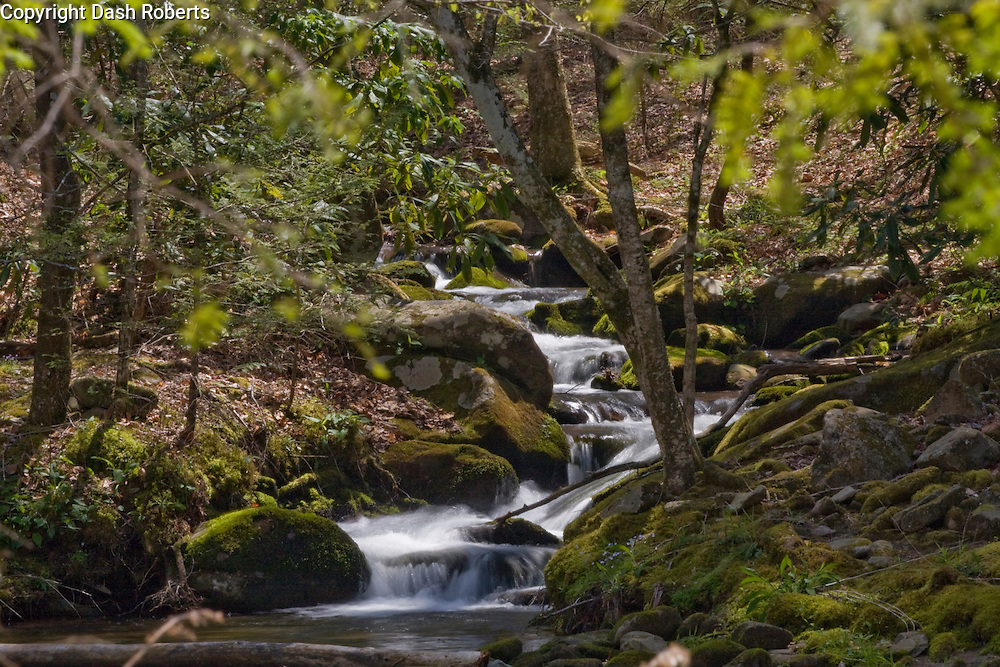 Small tributary empties into the Little River in the Smoky Mountains near Townsend, Tennessee.