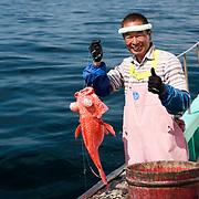 Hasegawa-san holding up a freshly caught deep-sea rockcod (Sebastes matsubarai), called akou-dai in Japanese.