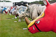 Rhinomania launch event by wild in art at chester racecourse