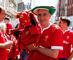 A Wales fan enjoying the pre match atmosphere<br /> <br /> Photographer Simon King/Replay Images<br /> <br /> Friendly - Wales v England - Saturday 17th August 2019 - Principality Stadium - Cardiff<br /> <br /> World Copyright © Replay Images . All rights reserved. info@replayimages.co.uk - http://replayimages.co.uk