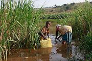 Children collect drinking water  from a swamp off shoot of Akagera river. Near Gatora village. Juru Sector. Bugesera district. Rwanda .© Zute Lightfoot / Water Aid..