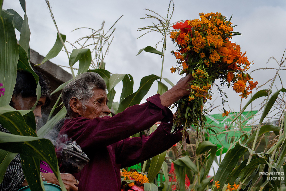 """The tlamaketl (""""the one who knows"""") takes the flowers and wets them with water. After that he prays turning into the four cardinal points in nahua language. He is the only man authorized to get up in the hill in this female ritual. (Photo: Prometeo Lucero)"""