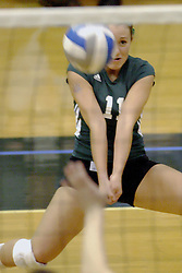 27 October 2006: Ashley Reed concentrates on a service reception. The Bears won the match 3 games to 1. The match between the Washington University Bears and the Illinois Wesleyan Titans took place at Shirk Center on the IWU campus in Bloomington Illinois.<br />