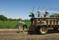 Martina Howe helps Amelie Meyer off the tractor followed by Debbie Johnson and Kristen Meyer for a morning of picking their own strawberries at Beans and Greens Farm Stand in Gilford on Friday.  (Karen Bobotas/for the Laconia Daily Sun)