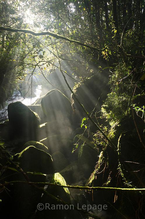 """AUYANTEPUY, VENEZUELA. Rio Churum, El Auyantepuy es el mayor de los tepuis del Parque Nacional Canaima. En sus 700 kms2 alberga el salto angel o conocido por lengua indígena Pemon como """"Kerepacupai Vena; es la caída de agua más grande del mundo con sus 979 metros de altura. (Ramon lepage /Orinoquiaphoto/LatinContent/Getty Images)"""
