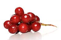 Sudio shot of grapes on white background