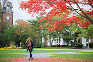 10/13/15 – Medford/Somerville, MA – A student walks under a vibrantly colored tree as fall begins to affect the Academic Quad on Tuesday, Oct. 13, 2015. (Evan Sayles / The Tufts Daily)
