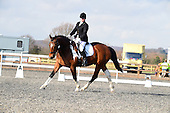 12 - 16th Feb - Dressage