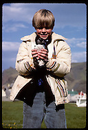 Boy holds puffin chick he rescued in Heimaey park for release at shore; August, Westmann Islands Iceland