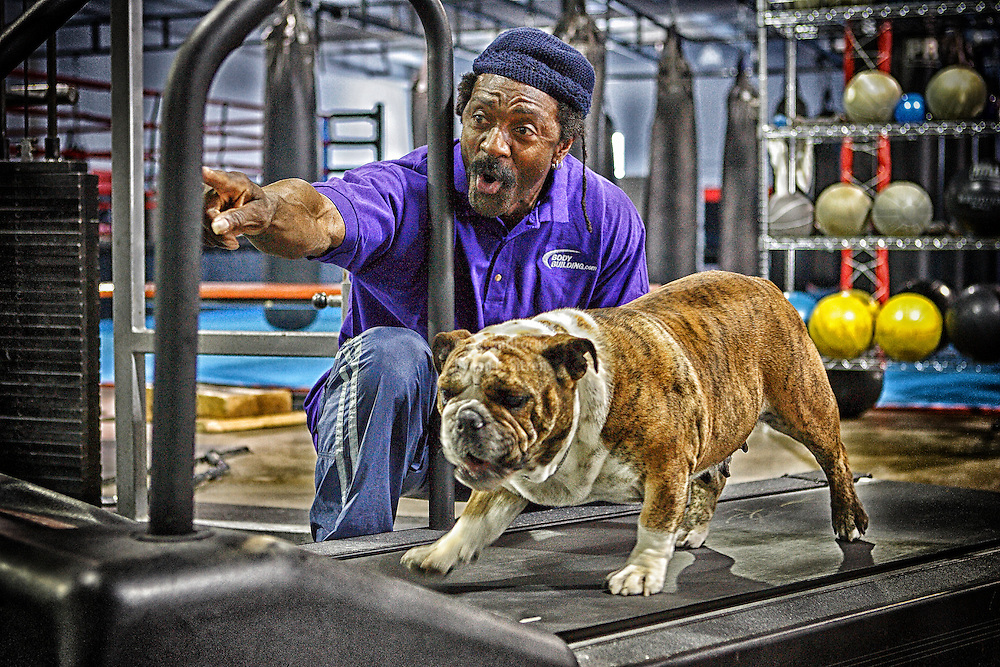 World famous bodybuilding coach and trainer Charles Glass doing gym training with a dog for Bodybuilding.com
