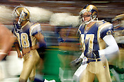 St. Louis Rams wide receivers Ricky Proehl (87) and Torry Holt (88) running out at introduction before a 15 to 14 win over the New York Giants on 10/14/2001..©Wesley Hitt/NFL Photos