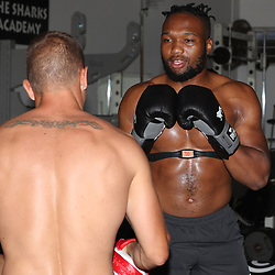Lukhanyo Am during the cell c sharks backs boxing pre season training session at  Growthpoint Kings Park ,18,01,2018 Photo by Steve Haag)