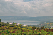 Israel, lower Galilee landscape, Overlooking the sea of Galilee Photographed from Poria Illit