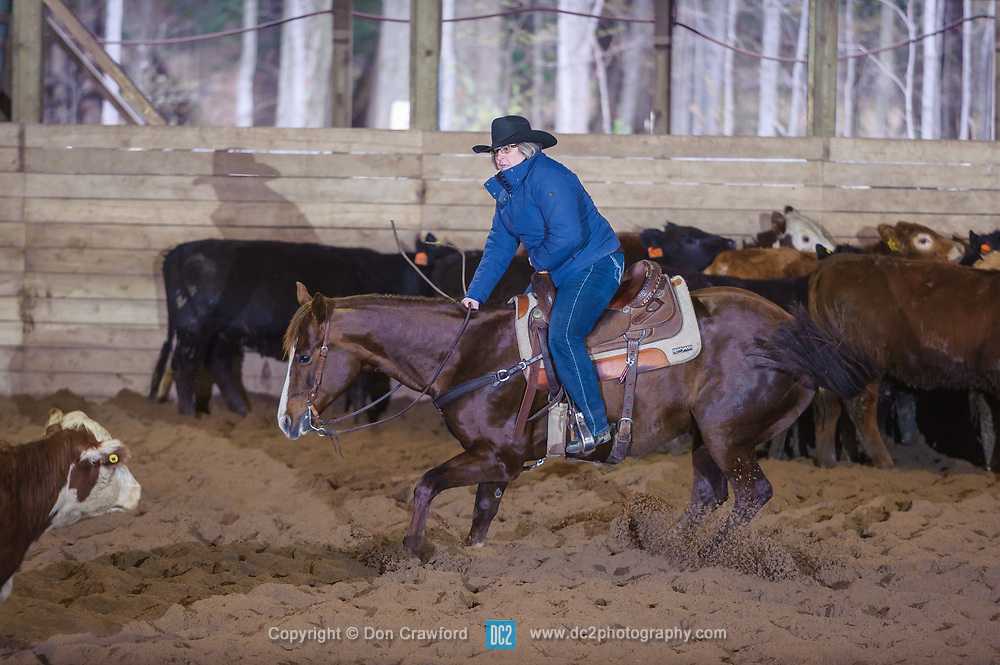 April 30 2017 - Minshall Farm Cutting 2, held at Minshall Farms, Hillsburgh Ontario. The event was put on by the Ontario Cutting Horse Association. Riding in the Ranch Class is Nancy Poole on Miss Smart Freckles owned by Troy Donaldson.