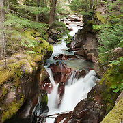 Falls in Avalanche Brook, Glacier National Park, Montana, USA