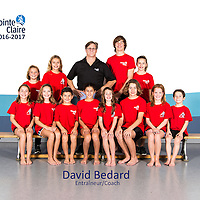 David Bedard