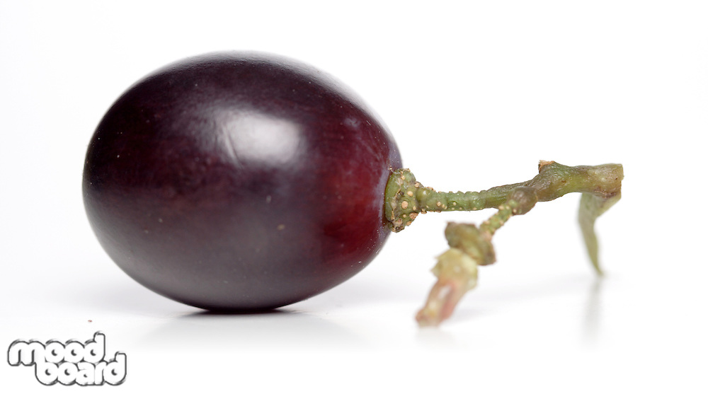 Close-up of grape on white background
