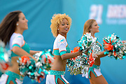 Miami Dolphins cheerleaders during the Dolphins 20-16 loss to the Carolina Panthers at Sun Life Stadium on Nov. 24, 2013 in  in Miami Gardens, Florida.                 ©2013 Scott A. Miller