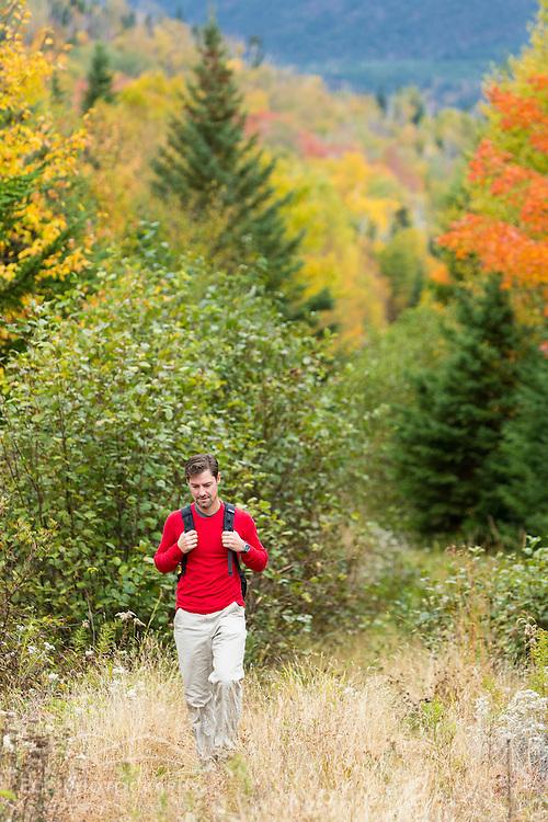 A man walks on a woods road in fall in Reddington Township, Maine. Near Crocker Mountain. High Peaks Region.