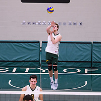 1st year middle blocker Mason Issel (14) of the Regina Cougars in action during Men's Volleyball home game on November 18 at Centre for Kinesiology, Health and Sport. Credit: Arthur Ward/Arthur Images