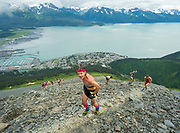 Runners snake up the narrow path to the mountain's summit in the 2017 Mount Marathon race in Seward, Alaska.