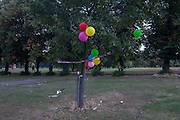 Birthday party balloons left tied in a tree of Ruskin Park, south London borough of Lambeth, UK.