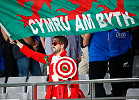 Rugby Union - 2019 Rugby World Cup - Bronze Final (Third Place Play-Off): Wales vs. France<br /> <br /> Welsh fans at Tokyo Stadium, Tokyo.<br /> <br /> COLORSPORT/LYNNE CAMERON