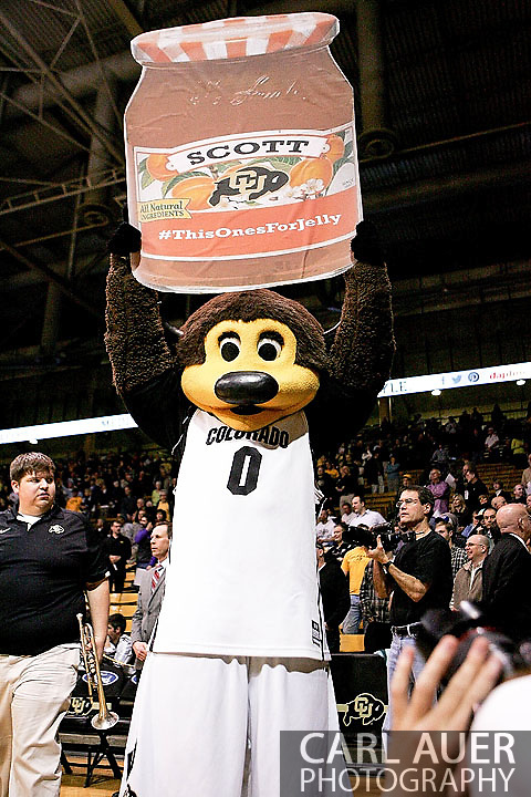 February 21st, 2013 Boulder, CO - Chips, the Buffaloes mascot, holds up a Scott sign in tribute to the injured Josh Scott who suffered a concussion in the previous game prior to the start of the NCAA basketball game between the University of Utah Utes and the University of Colorado Buffaloes at the Coors Events Center in Boulder CO