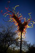 Chihuly Installation at Desert Botanical Garden - Phoenix