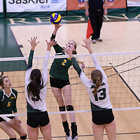 1st year middle Emma Matheson (2) of the Regina Cougars in action during Women's Volleyball home game on November 19 at Centre for Kinesiology, Health and Sport. Credit: Arthur Ward/Arthur Images