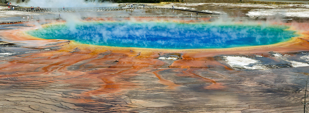 "Colorful microbial mats coat terraces of Grand Prismatic Spring in Midway Geyser Basin, Yellowstone National Park, Wyoming, USA. Grand Prismatic is the largest hot spring in the United States, and the third largest in the world, next to those in New Zealand. The sterile blue water in the pool's center is too hot to support life (87 degrees Centigrade or 188 F). Pure water selectively absorbs red wavelengths of visible light, making the center deep blue. But in cooler water along the edges, microbial mats of thermophilic (heat-loving) cyano-bacteria and algae thrive. Yellow, orange, and red pigments are produced by the bacteria as a natural sunscreen. As a result, the pool displays a spectrum of colors from the bright blue water of the center to the orange, red, and brown algal mats along the edges. Summer mats tend to be orange and red, whereas winter mats become dark green. Yellowstone was the first national park in the world (1872), and UNESCO honored it as a World Heritage site in 1978. Photo was published in ""Light Travel: Photography on the Go"" book by Tom Dempsey 2009, 2010.  Three overlapping images were stitched to make this panorama."