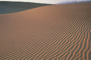 Sun sets on Death Valley dunes accentuating a pristine ripple pattern of sand.