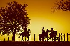 Gaúchos ao Pôr-do-Sol