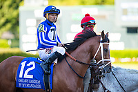 HOT SPRINGS, AR - MAY 02:  Jockey Gabriel Saez rides #12 By My Standards at the start of The Oaklawn Handicap at Oaklawn Racing Casino Resort on Derby Day during the Covid-19 Pandemic on May 2, 2020 in Hot Springs, Arkansas. (Photo by Wesley Hitt/Getty Images)