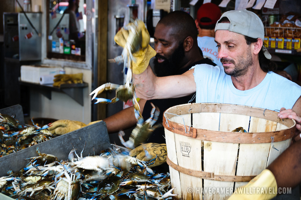 Wrangling blue crabs at the Maine Ave Fish Market on the Southwest Waterfront in Washington DC.