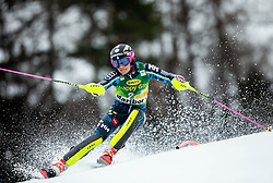 HANSDOTTER Frida of Sweden competes during the 7th Ladies'  tSlalom at 55th Golden Fox - Maribor of Audi FIS Ski World Cup 2018/19, on February 2, 2019 in Pohorje, Maribor, Slovenia. Photo by Vid Ponikvar / Sportida