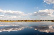 Linyanti concession, Botswana