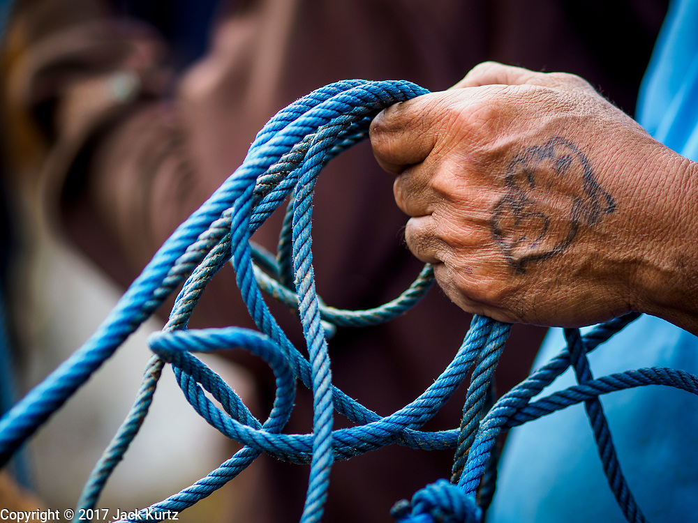 06 AUGUST 2017 - MENGWI, BALI, INDONESIA: A closeup photo of a man's hand holding lead ropes for cows he's watching in the livestock section of the Bringkit Market in Mengwi, about 30 minutes from Denpasar. Bringkit Market is famous on Bali for its Sunday livestock and poultry market. Hundreds of the small Bali cows are bought and sold there every week. Bali's local markets are open on an every three day rotating schedule because venders travel from town to town. Before modern refrigeration and convenience stores became common place on Bali, markets were thriving community gatherings. Fewer people shop at markets now as more and more consumers go to convenience stores and more families have refrigerators.     PHOTO BY JACK KURTZ