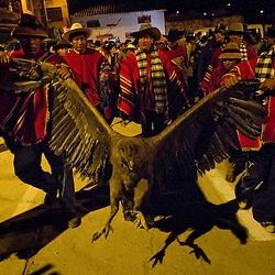 A male condor is paraded around the town's main square during Yawar Fiesta (Feast of Blood) celebrations in the Andean town of Coyllurqui, in Apurimac, Peru. This Peruvian tradition, that takes place annually in July during the Independence day celebrations, consists of capturing a condor or condors and parading them around town for about a week. The highlight of the tradition is a bullfight with the condor strapped on top of the bull. For locals, the bull represents the Spanish and the condor the native population. The condor is freed after the festivities in a ceremony called Cacharpari.