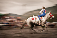 Stunt rider on white horse going backwards in the mud at a local rodeo in Duncan Mills, California, USA.