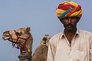 Rajusthani pastoralist with his camels at the Pushkar camel and livestock fair which takes place in the Hindu month of Kartik (October / November) ten days after Diwali (Festival of Lights).  They usually wear cotton dhoti (strip of fabric tied into pants), cotton jacket and white cotton turban.<br /> Pushkar has always been the the region's main market for herdsman and farmers buying and selling camels, horses, indigenous breeds of cattle and even elephants. Over the years this annual trading event has increased in volume to become one of the largest in Asia. Temporary tents and campsites suddenly appear to accomodate the thousands of pilgrims, villagers and tourists. Entertainers and contests abound and a festive funfair atmosphere prevails over Pushkar during the Mela's 2 week duration. Thousands of men come first with their camels, horses and cattle and camp on the dunes to transact business. 3 days before the full moon the women arrive beautifully attired. The town of Pushkar is one of the holiest centers of Hinduism and houses one of the few Brahma Temples in India. It is one of the 5 essential pilgrimage centers which a Hindu must visit in his lifetime along with Badrinath, Puri, Rameshwaram and Dwarka. The 12 day fair culminates in a religious Hindu pilgrimage and reaches a crescendo on the night of the full moon (Purnima) when pilgrims take a dip in the holy lake.  <br /> Pushkar, Rajasthan. INDIA