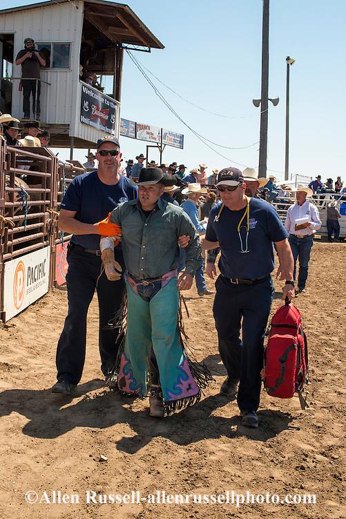 Bareback rider injured, Miles City Bucking Horse Sale, Montana, Richard Wilson, MODEL RELEASED on injured Rider only