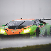 ROAR before 24 Test 2019
