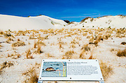 Interpretive boardwalk, White Sands National Monument, New Mexico USA