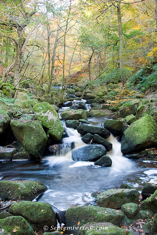 Burbage Brook tumbles its way down the steep rocky valley of Padley Gorge, Peak District, Derbyshire, UK