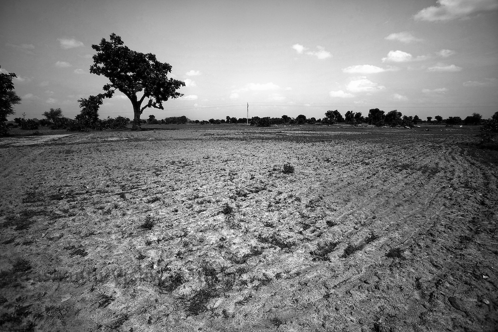 A drought affected farms in Laundi Madhya Pradesh, India, on Saturday September 12, 2009. In Bundelkhand between the years 1999 and 2008, the average number of rainy days per year has reduced from 52 to 23. In 2009 it is facing deficit of further 53%. The biggest ravine area with fallow land in India exists in Madhya Pradesh.  During last 20 years, huge land degradation has occurred in the region. People are dying of hunger deaths, children suffer from malnutrition, cattle are abandoned on the streets, acres of land lie barren, the only mode of survival is migration to the cities, the villages are empty leaving the old and sick behind to fend for themselves.  Complete collapse of environmental system makes drought a regular feature and then it converts into famine. The policy makers are not yet realizing that agriculture and natural resources are not only a business for Indian society, but measure for socio-economic rights.
