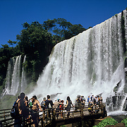Argentina. Igwazu. Igwazu Falls. Salto San Martin thunders into the river below.