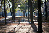 Autumn in The Hague, Netherlands. A view of the Lange Voorhout in the morning.