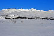 Sylene er vernet. Sylan landskapsvernområde og Sankkjølen naturreservat ble opprettet av Kongen i statsråd 11. april 2008. Området er til sammen 191 km2, og opphever den botaniske fredningen fra 1917, som var Norges første naturfredning. Sylene, også kalt Sylan, Sylarna, er de høyeste grensefjellene mellom Norge og Sverige. Viktig natur- og turområde, ikke minst med merkede løyper og hytter i regi av Trondhjem Turistforening/DNT. Sylene, the highest mountains on the border between Norway and Sweden.