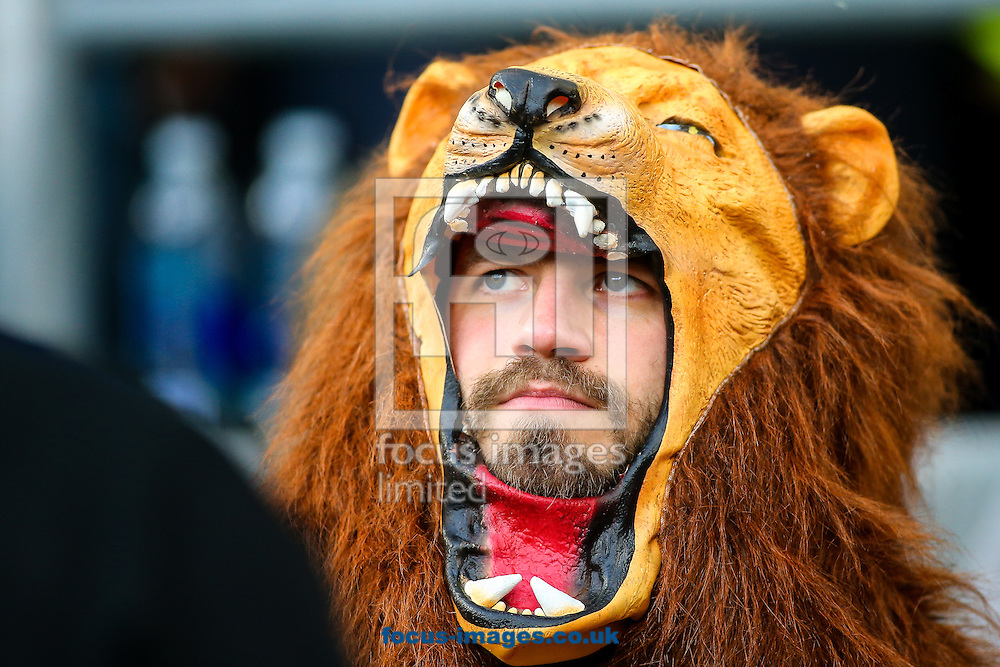 A fan before the final of the 2015 Rugby World Cup at Twickenham Stadium, Twickenham<br /> Picture by Andy Kearns/Focus Images Ltd 0781 864 4264<br /> 31/10/2015